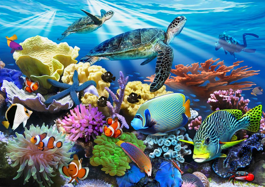 Reef Life Wall Mural